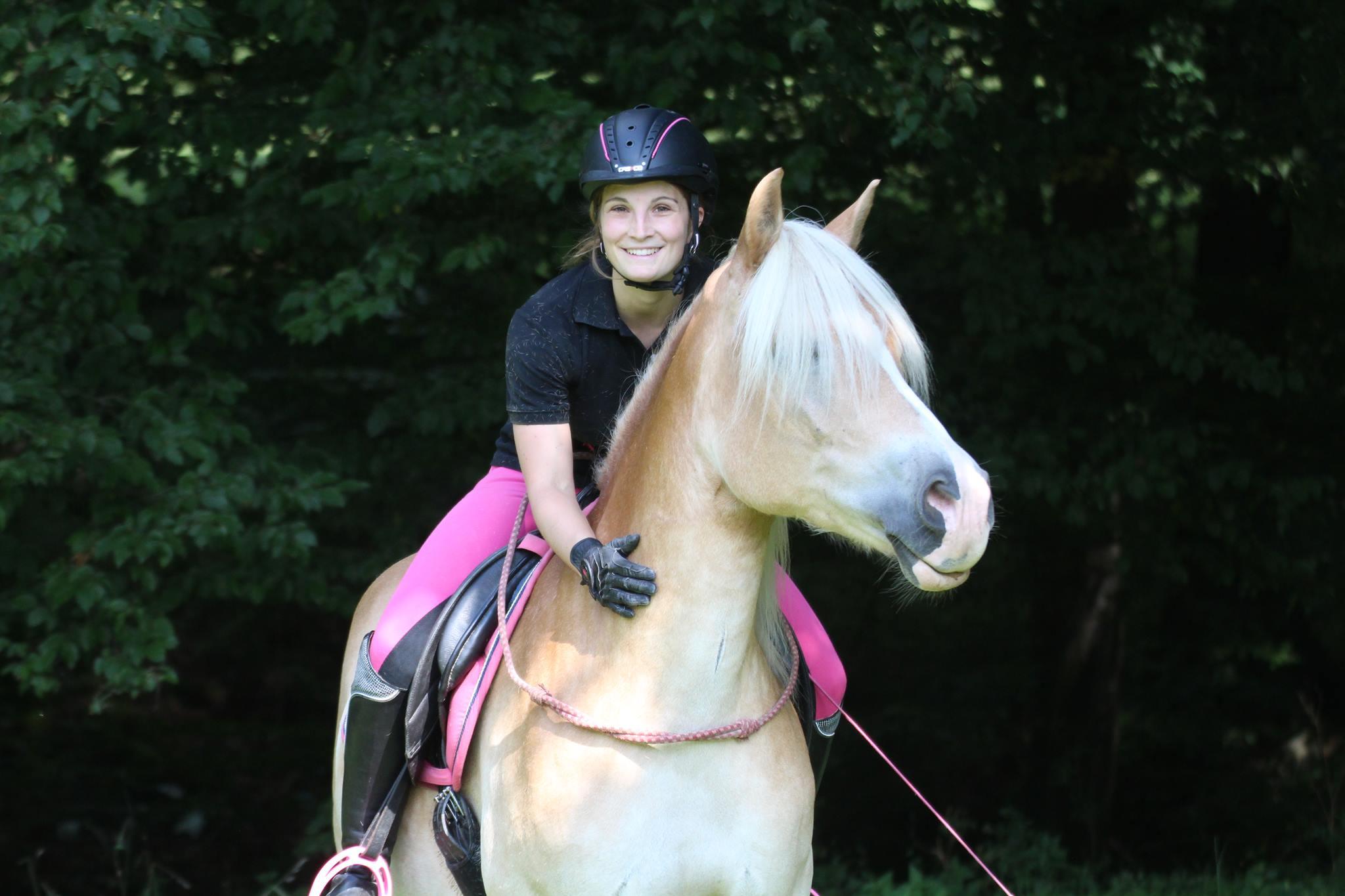 pferd gekauft schüchtern