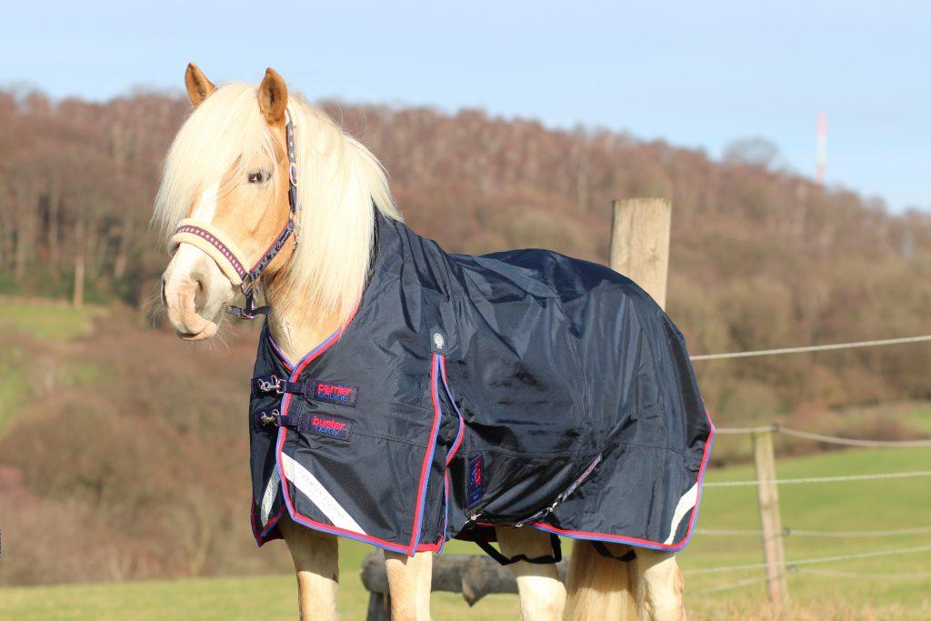 Der Regenschirm fürs Pferd